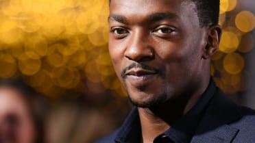 Real Fan Life: Anthony Mackie