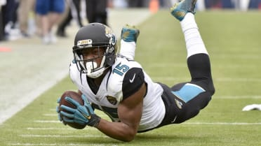 What the (Blank)?: Allen Robinson