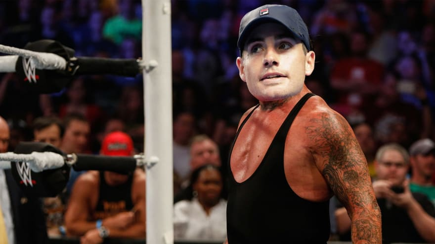 If Tennis Stars Were WWE Superstars